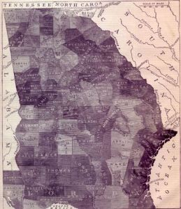 County Slave Map of Georgia | To Preserve Family and Farm